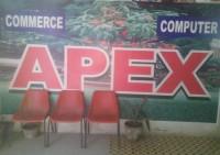 APEX INSTITUTE OF PROFESSIONAL STUDIES